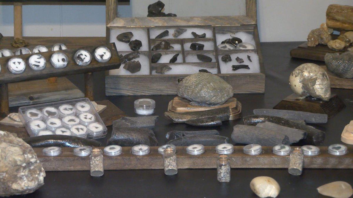 FILE Waynesboro, MS fossil exhibit