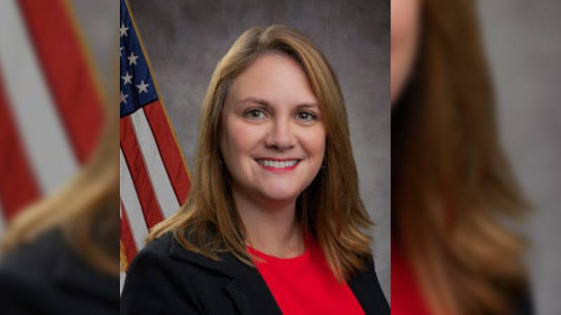 Gov. Tate Reeves has named Laura Hipp interim executive director of the Mississippi Development...