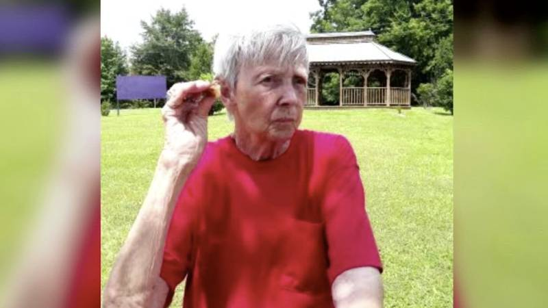 'They have done everything... to find her': Miss. woman, 79, still missing after days-long search
