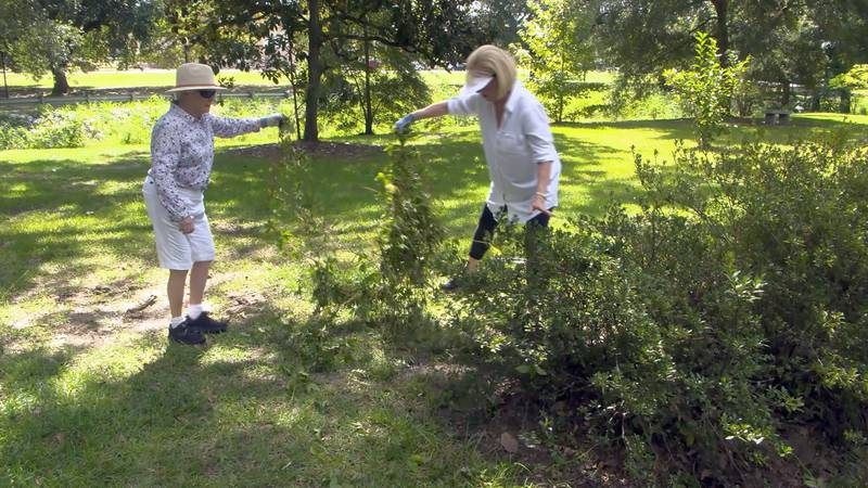 Members get help in cleaning up the park from city workers and a local business, Blooms &...